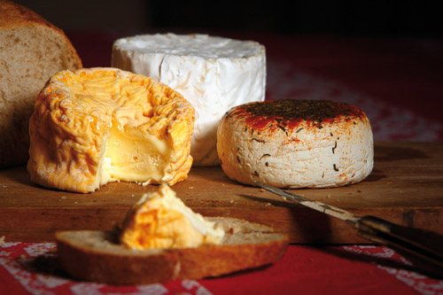 Fromages de Champagne